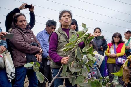 el-centro-ecologico-hecho-por-mujeres-en-san-juan-de-lurigancho