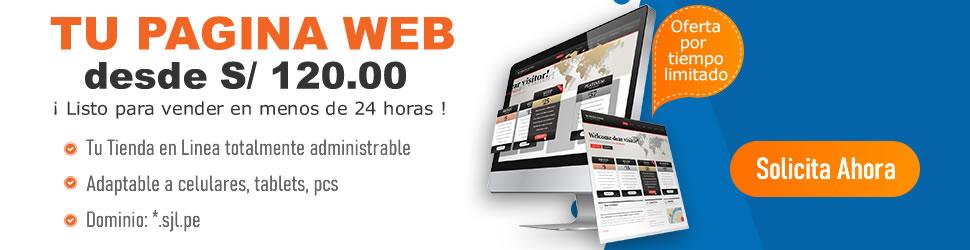 Diseño de Paginas Web en SJL