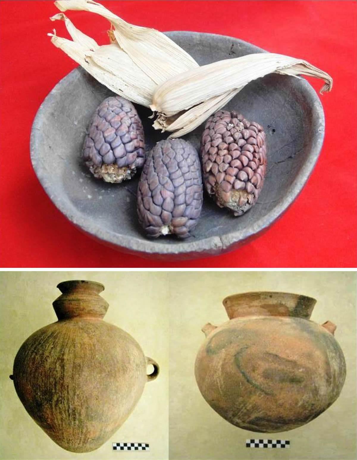 Mate con maíces hallados en Campoy 1990 (Foto; Julio Abanto:2010) y vasijas halladas en las excavaciones de Pedro Caycho en Mangomarca