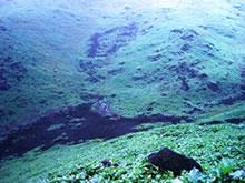 Lomas de Mangomarca